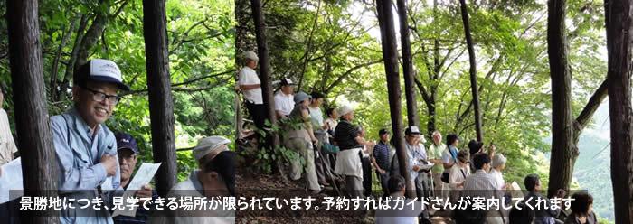 shimoguri_01