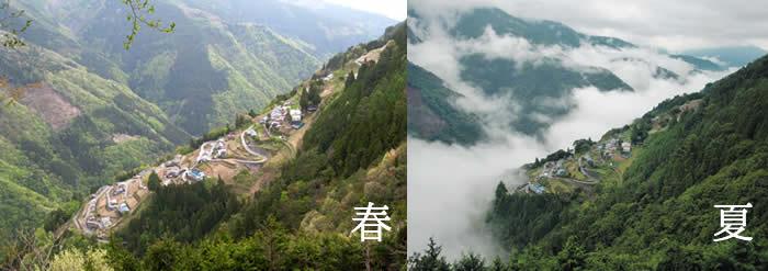 shimoguri_09