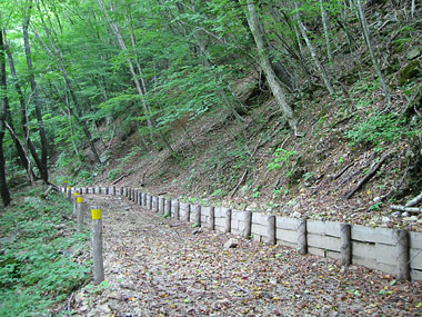 現在に残る、森林鉄道軌道跡