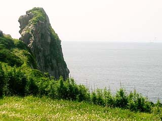 saruiwa