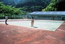島畑 テニス